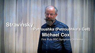 Stravinsky – Petrushka (Petrushka's Cell)